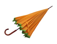 Collector's Umbrella Sword